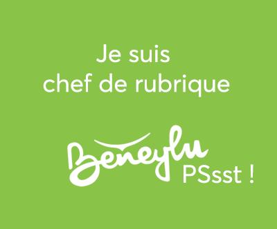chefderubrique